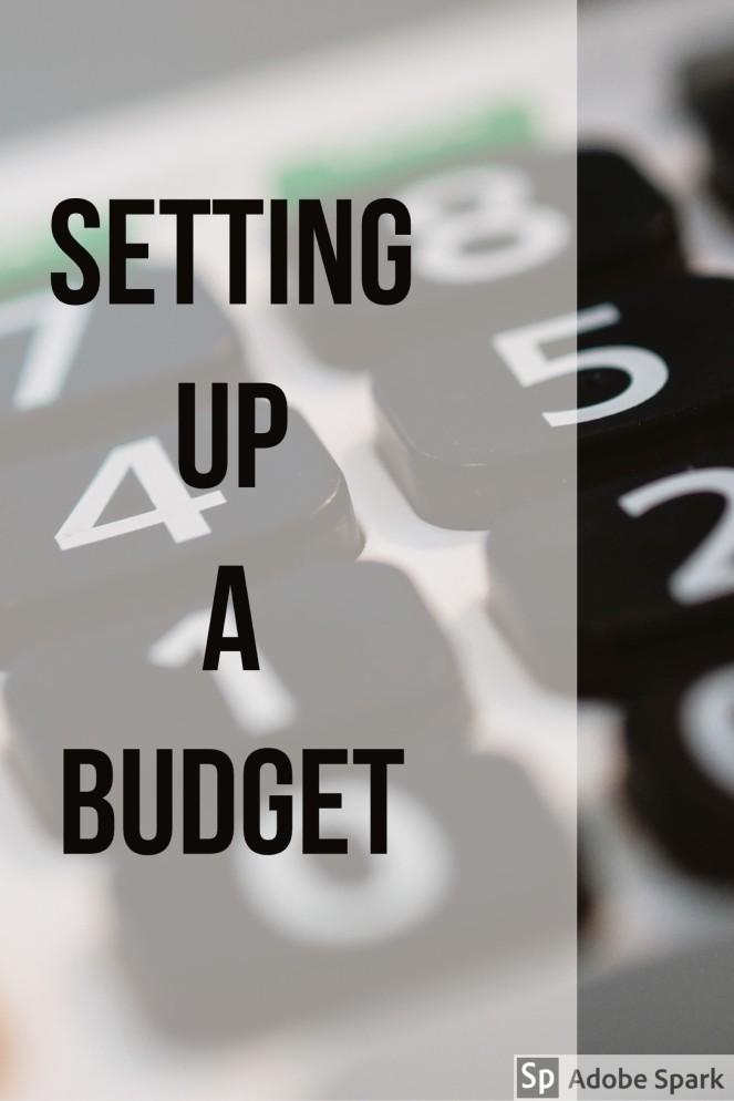 Setting up a budget pin image