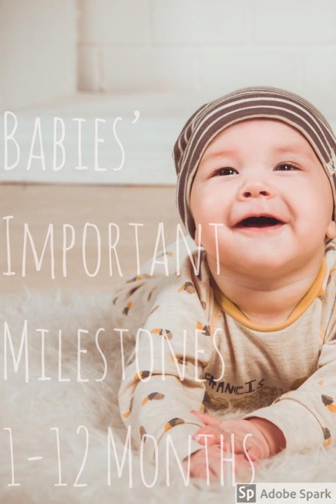 Baby Milestones Pin Image