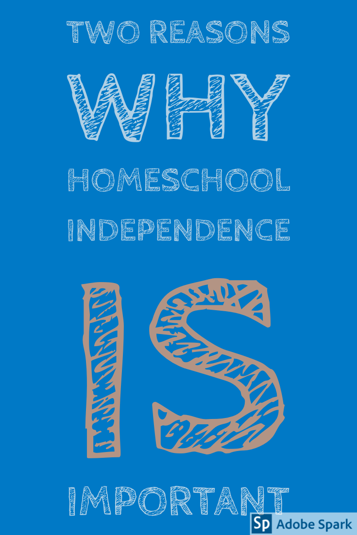 Homeschool Independence Pin Image