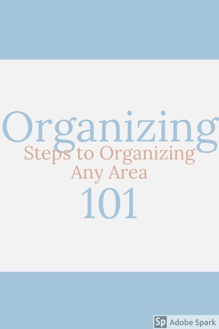 Organize Pin Image