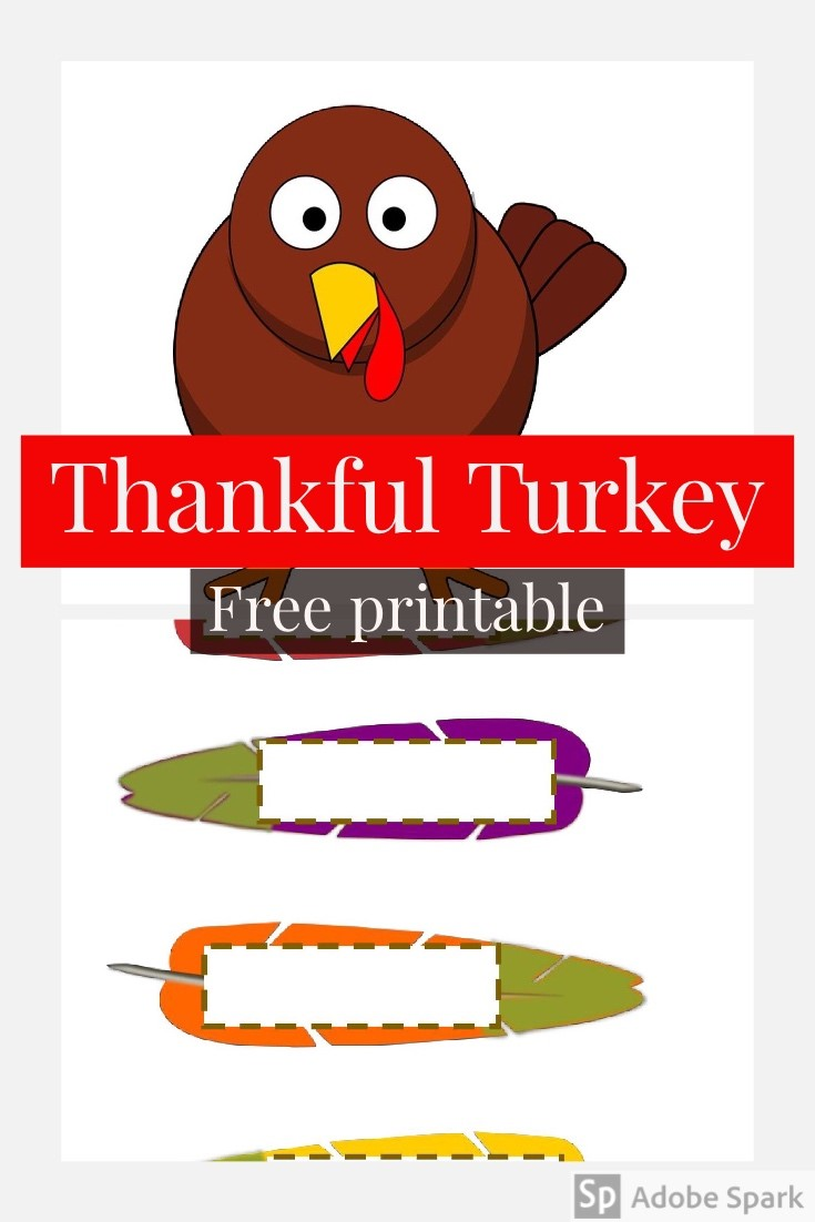 Turkey Pin Image