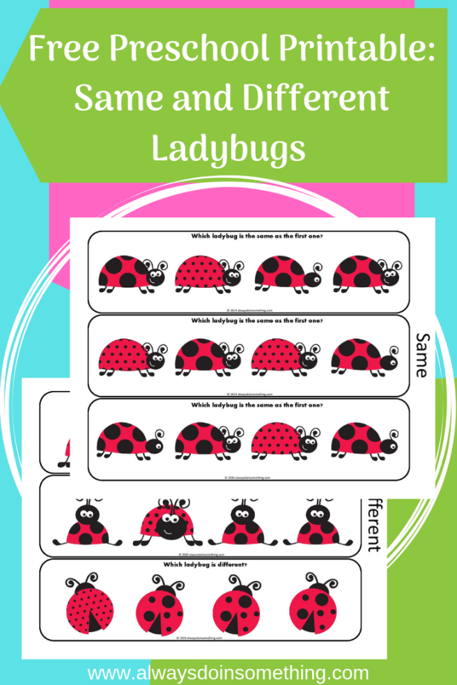 Same and Different Lady Bugs Pin Image