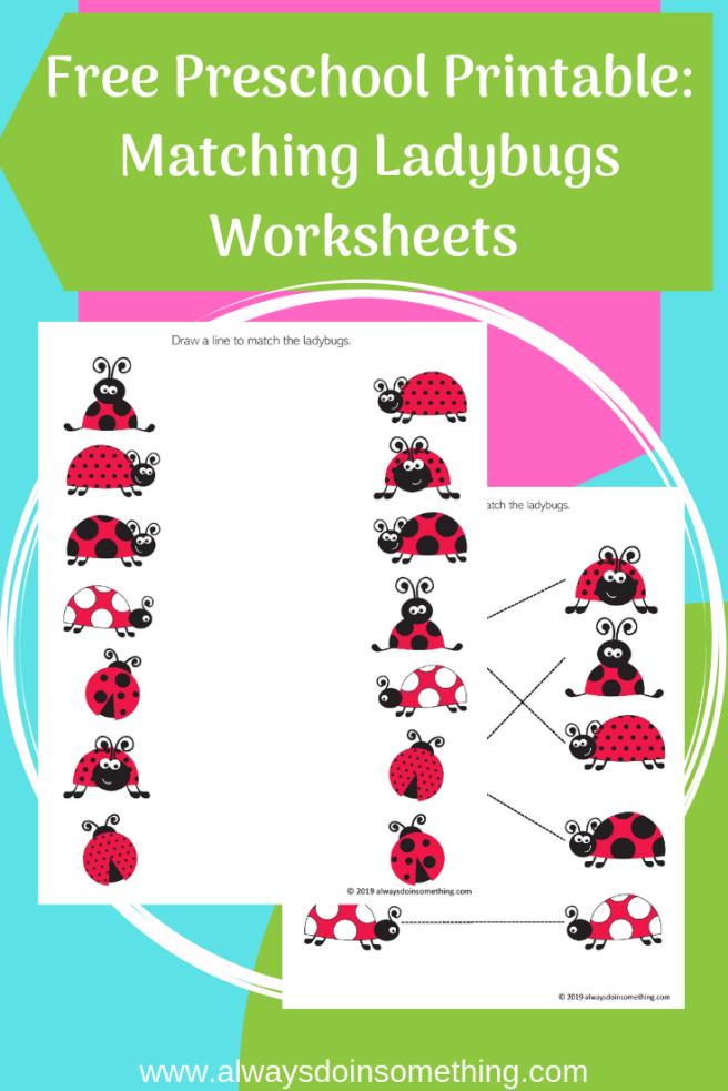 Free Preschool Printable: Matching Ladybugs Worksheets Pin Image
